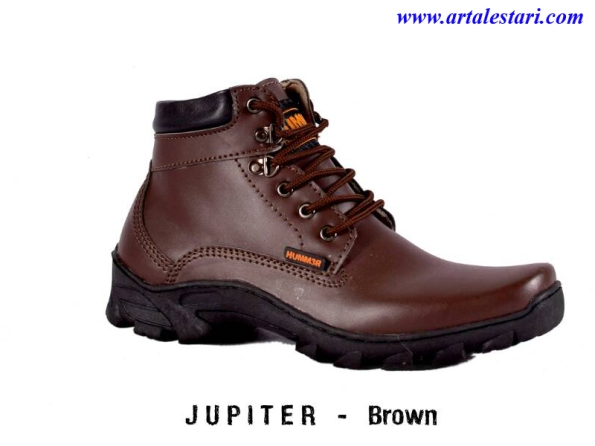 29Jupiter - 1Brown